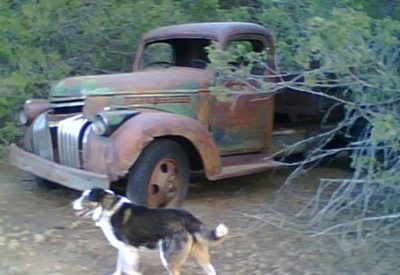 1949 GMC 1 Ton Dually Dump Truck Restoration Project - Is all complete including TPO $2800